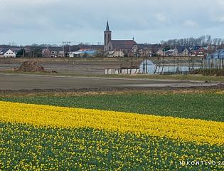Nederland - LENTE H…